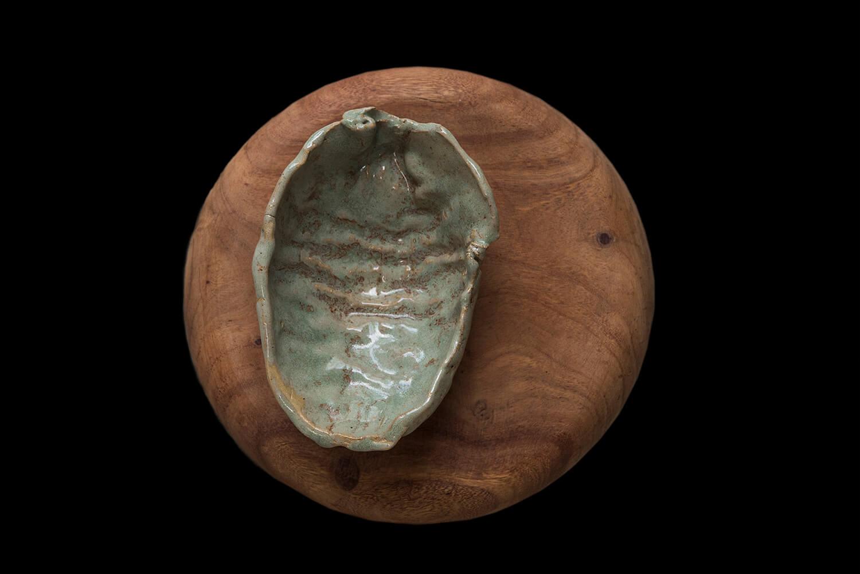 coconut ceramics